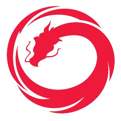 Vault Dragon company logo