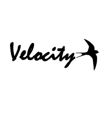 Velocity Enterprise company logo
