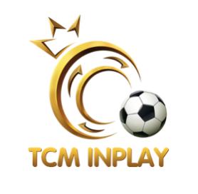 TCM INPLAY LTD company logo