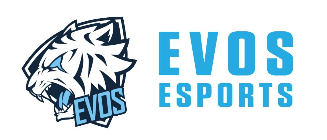 PT. Evos Esports Indonesia company logo