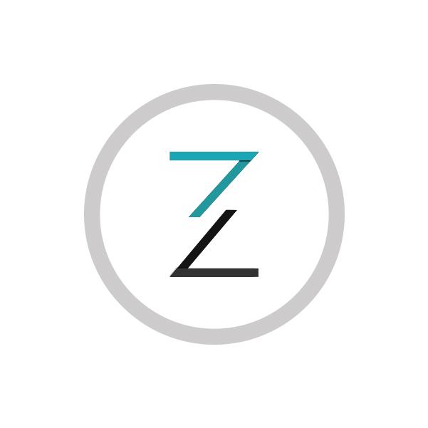 Onezine company logo