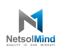 PT. NETINDO SOLUTION GROUP company logo
