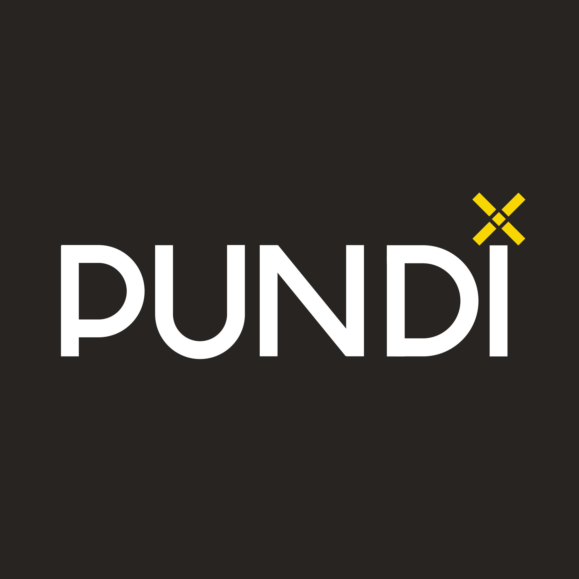 Pundi X company logo