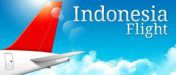 Indonesia flight thumb