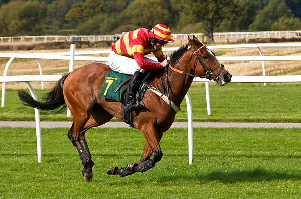 how to make informed bets on horse racing