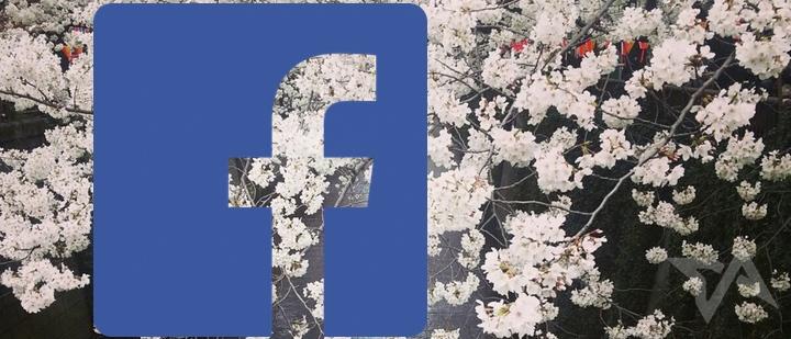 facebook users in Japan 2013