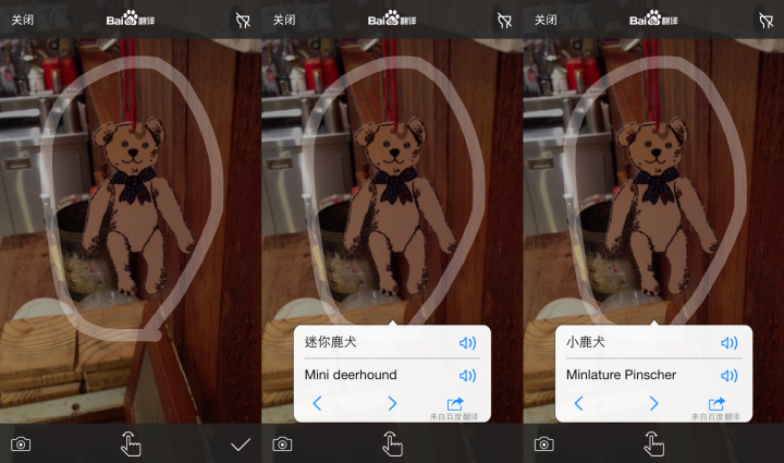 Baidu Image Teddy Bear