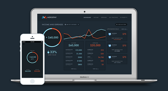 MergePay is Mint for business, making bookkeeping easier