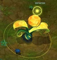 ward atual in game