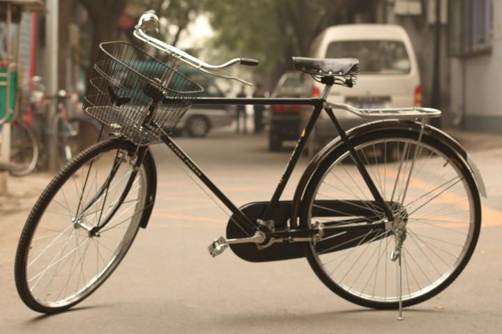 flying pidgeon bike china