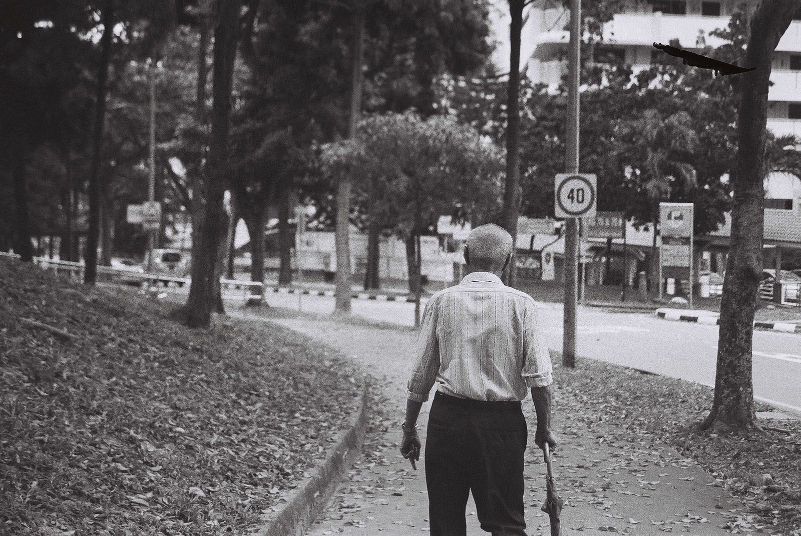 perception of elderly people in singapore Attitudes towards the elderly among singapore medical students  elderly people were de fi ned as those aged 65 years and above for this study  in singapore.