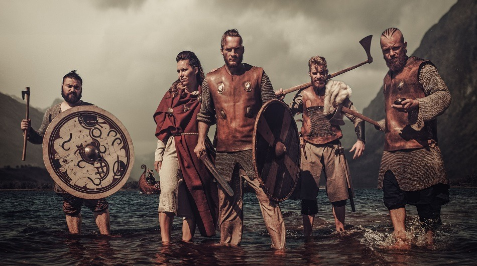 Vikings, Vikingcubator, NHST