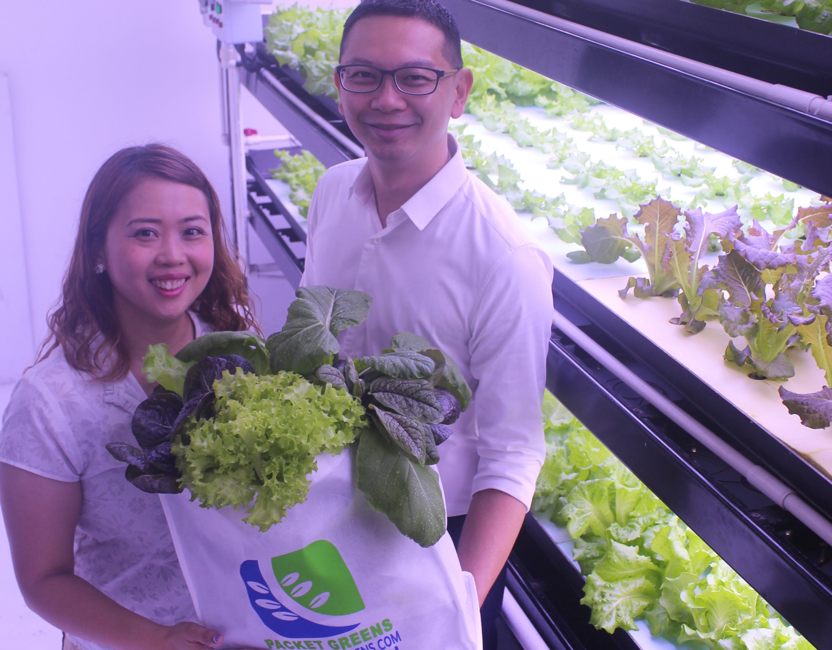 Packet Greens raises $2m to curb Singapore food imports
