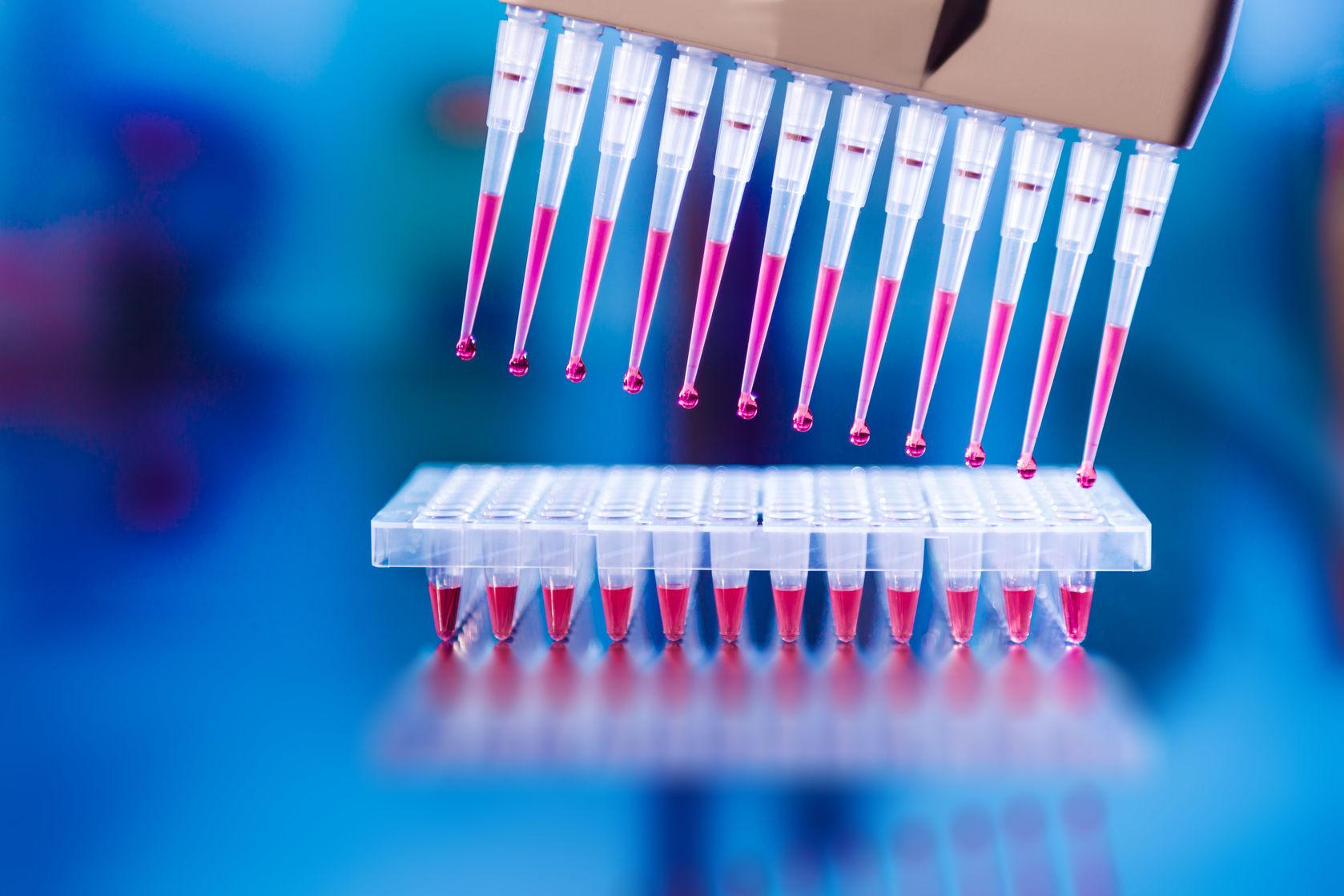 DNA testing, genetics