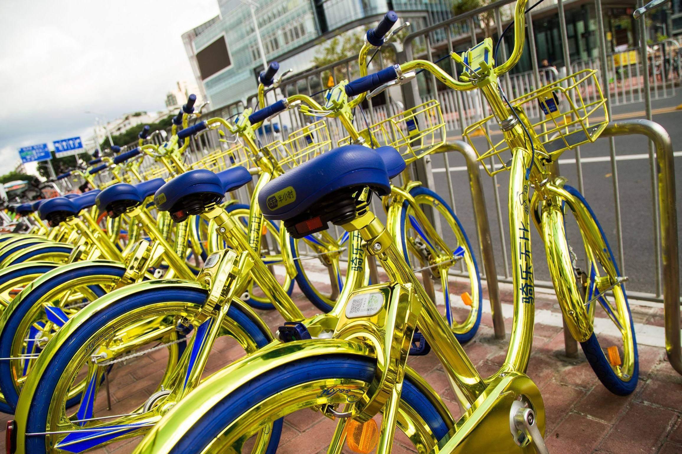 Coolqi bikes