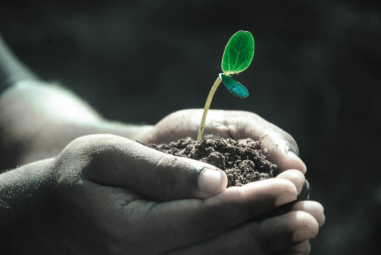 How startups can grow to become asset-light businesses