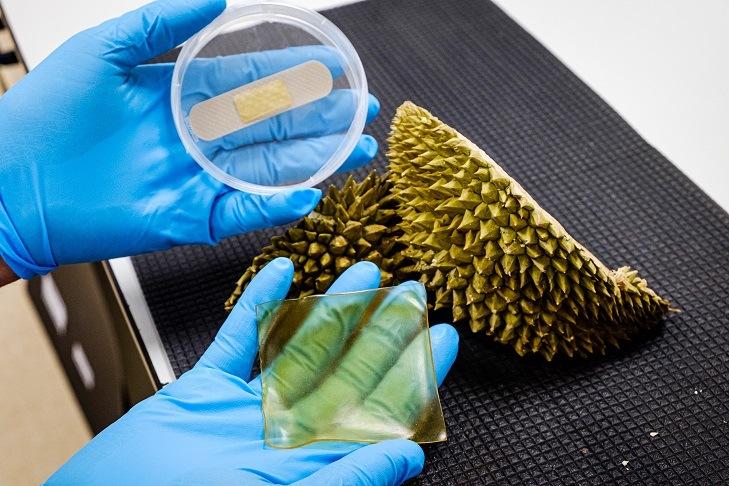 NTU scientists develop antibacterial gel bandage made from durian husk